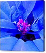 Fantasy Flower 11 Canvas Print