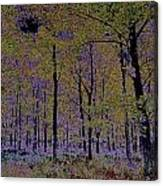 Fantasy Forest Art Canvas Print