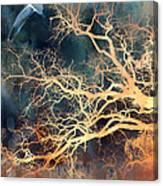 Seagull Gothic Fantasy Surreal Trees And Seagull Flying Canvas Print