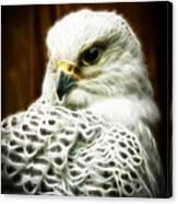 Fantasy White Falcon Canvas Print