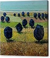 Faraway Field Canvas Print