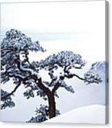 Fare-well Pine Tree Canvas Print