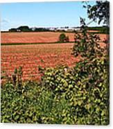 Farm Along Confederation Trail-pei Canvas Print