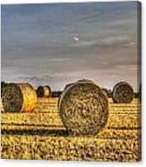 Farm Bales Canvas Print