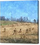Farm Days 2 Canvas Print
