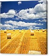 Farm Field With Hay Bales In Saskatchewan Canvas Print