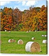Farm Fresh Hay Canvas Print