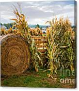 Farm Life1 Canvas Print