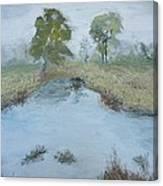 Farm Pond Canvas Print