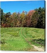 Farm Road In Autumn Canvas Print