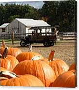 Farm Stand Pumpkins Canvas Print