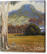 Farm With Large Gum Tree Canvas Print