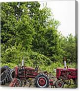 Farmall Tractors All In A Row Canvas Print