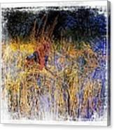 Farmers Fields Harvest India Rajasthan 6 Canvas Print
