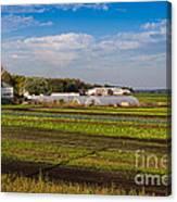 Farmer's Market And Green Fields Canvas Print