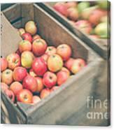 Farmers' Market Apples Canvas Print