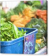 Farmer's Market Basil Canvas Print