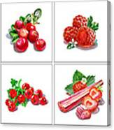 Farmers Market Gifts Red Vitamins Canvas Print