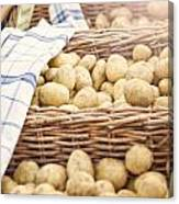Farmers Potatoes Canvas Print