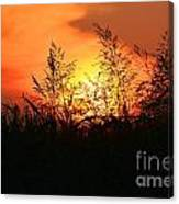 Farmer's Sunrise Canvas Print