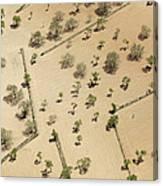 Farming Fields, Sant Antoni De Portmany Canvas Print