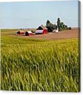 Farmlands Near Davenport Canvas Print