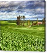 Farmstead Canvas Print