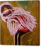 Farrella Mcshade Canvas Print