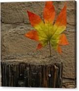 Faux Leaf Canvas Print