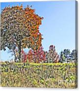 Favoring The Fall Colors Canvas Print