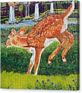 Fawn In The Holle Canvas Print