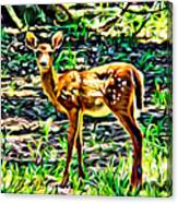 Fawn In The Woods Canvas Print