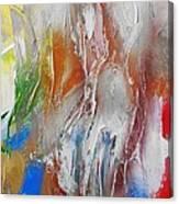 Fd272a Canvas Print