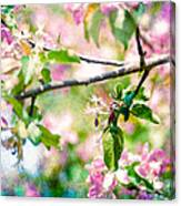 Feast Of Life 22 - Apple - The Beginning Canvas Print
