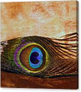 Feather Design Canvas Print