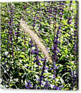 Feather In The Crowd Canvas Print