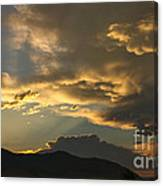 Feathers Of Sunlight Canvas Print
