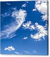 Feathertail Cloud Canvas Print