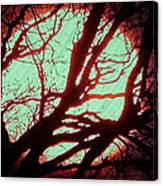 Featured Sun Peaceful Zentree Rest Canvas Print