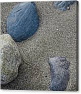 February Rock Garden Canvas Print