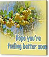 Feel Better Soon Greeting Card - Barberry Blossoms Canvas Print