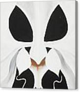 Feline-opsis Canvas Print