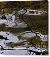 Fells Like A Landscape Canvas Print