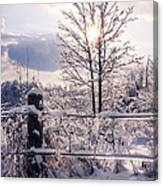 Fence And Tree Frozen In Ice Canvas Print