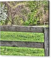 Fence Field Canvas Print