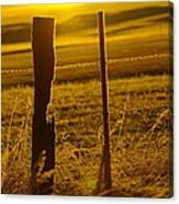 Fence Post In The Morning Light Canvas Print