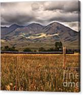 Fence View Canvas Print