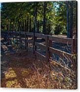 Fenceline 1 Canvas Print