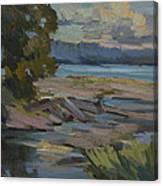 Fern Cove Vashon Island Canvas Print