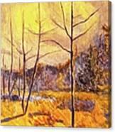 Ferrum Canvas Print